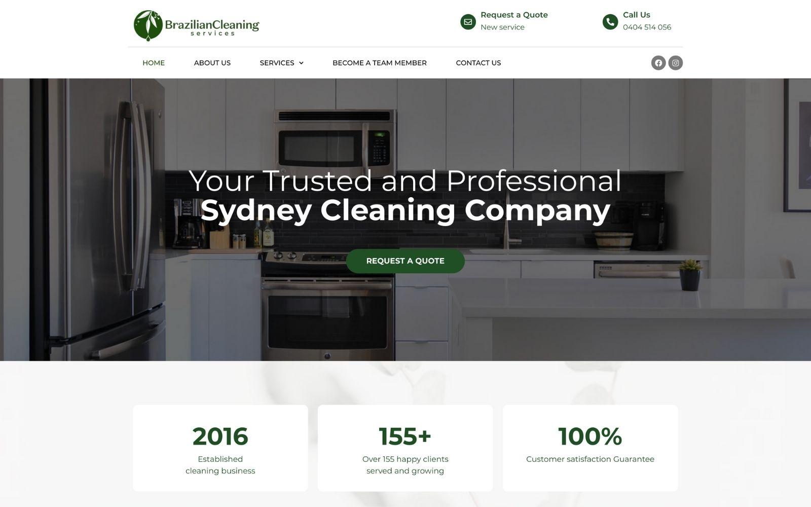 cleaning website design